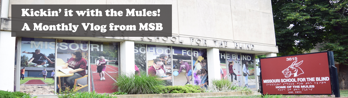 Kickin' it with the Mules! A Monthly vlog from MSB